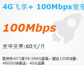 渭南4G飞享套餐+100Mbps宽带.png